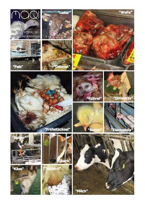 Veganismus-Bilder Rückseite