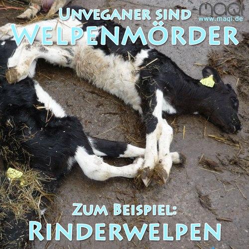 Welpenmörder Rinderwelpen Kälber - Bauernhofhof