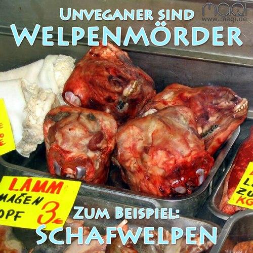 Welpenmörder Schafwelpen Lämmer - Kleinmarkthalle